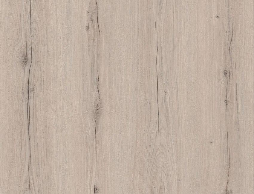 8302 Elvezia Grey